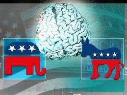 Donkey and Elephant Brain