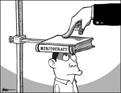 Meritocracy Measurement Cartoon