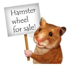hamster wheel for sale