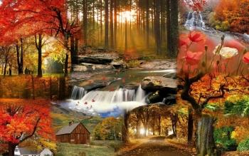 autumn leaves-scenes
