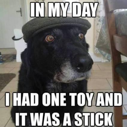 oldster-dog-story