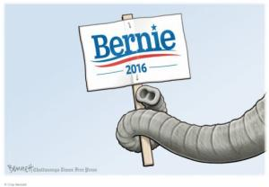 Bernie elephant trunk
