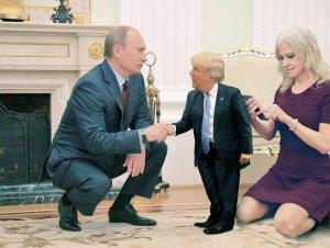 little-trump