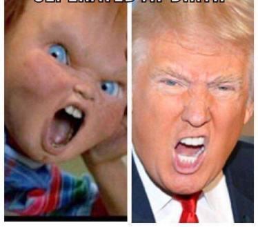 -Trump Chuckie